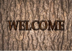 Art-Designs, Welcome-Holzdesign IV, Welcome-Holzmuster IV