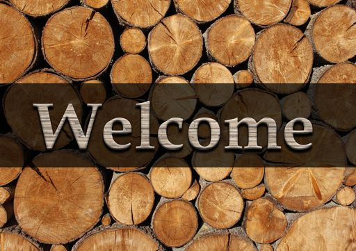 welcome_holz_5_512x361.jpg